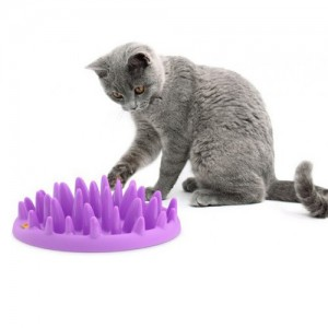 GAMELLE ANTI GLOUTON NORTHMATE CHAT
