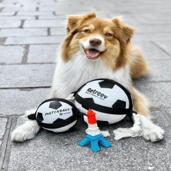Chez Moustaches, on est prêts pour encourager les bleus 🇫🇷 🐾⚽️  . . . #chienfoot #chiensupporter #allezlesbleus #ballonchien #chienfrancais #euro2021 #moustaches #france🇫🇷